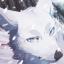 Avatar of icefox