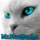 Avatar of Mr.NaviPacho