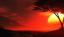 Avatar of Rednight